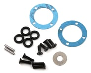 Team Losi Racing 22X-4 Differential Seal & Hardware Set | product-related