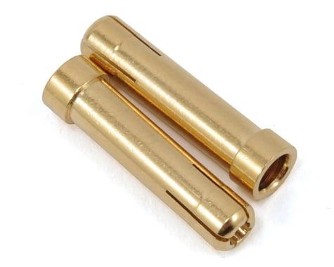ProTek RC 5mm to 4mm Bullet Reducer (2)